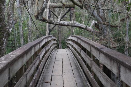 Suspension Bridge Stock Photo - Download Image Now
