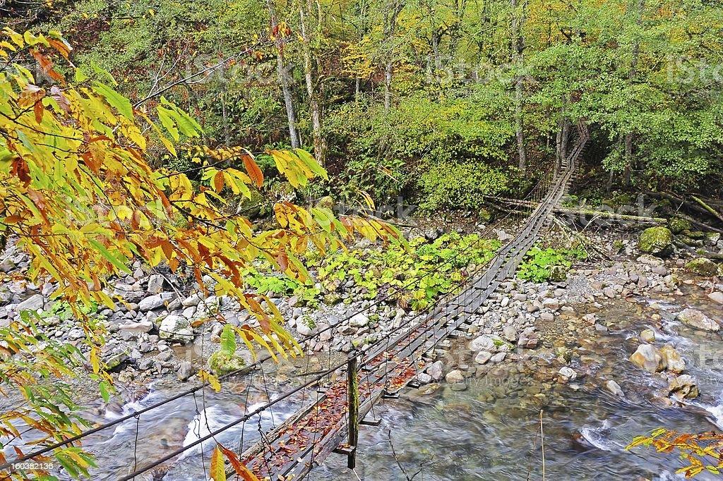 Suspension bridge. royalty-free stock photo
