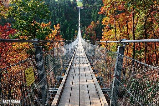 Suspension footbridge Geierlay (Hangeseilbrucke Geierlay) near Mosdorf, Germany
