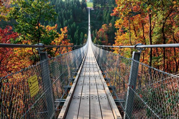 Suspension footbridge Geierlay (Hangeseilbrucke Geierlay), Germany Suspension footbridge Geierlay (Hangeseilbrucke Geierlay) near Mosdorf, Germany ravine stock pictures, royalty-free photos & images
