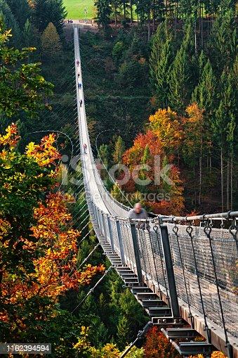 Footbridge Geierlay (Hangeseilbrucke Geierlay), Germany