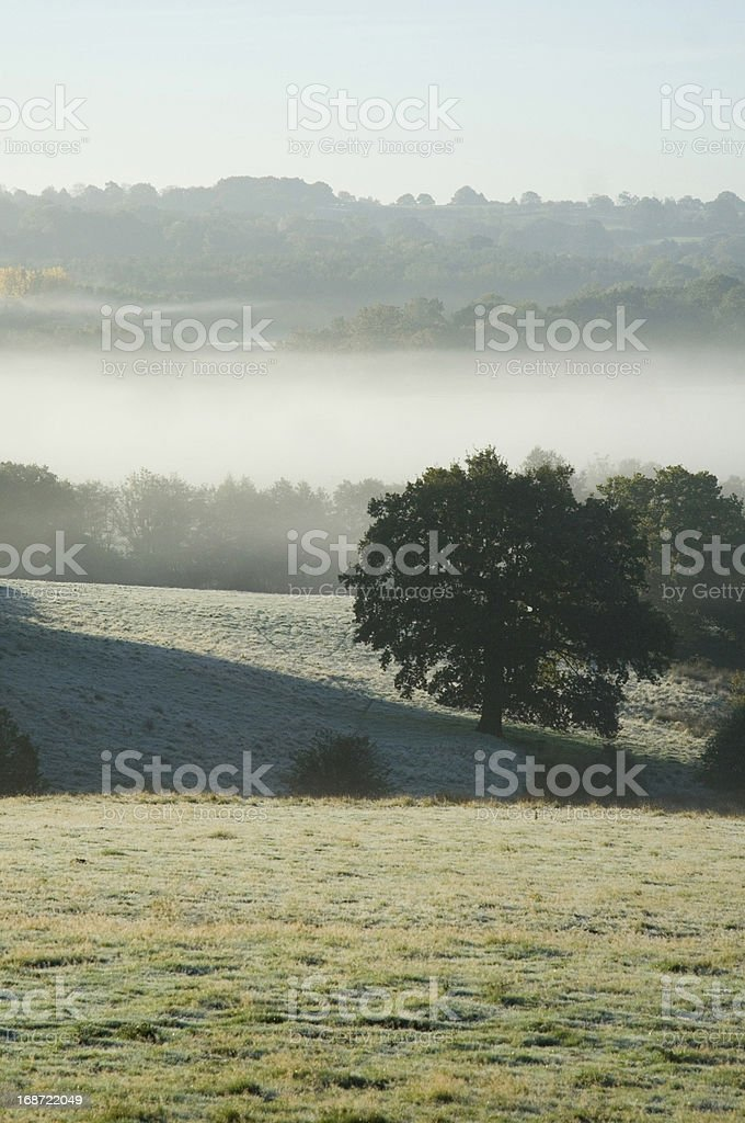 Sussex Mist royalty-free stock photo