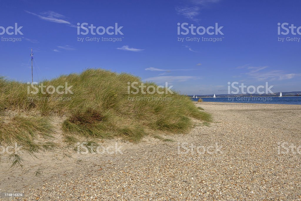 sussex royalty-free stock photo