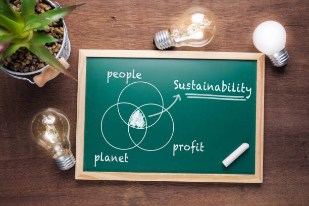 Sustainability Chart Sustainability topic and union chart of people, planet and profit on chalkboard with glowing light bulbs sustainable resources stock pictures, royalty-free photos & images