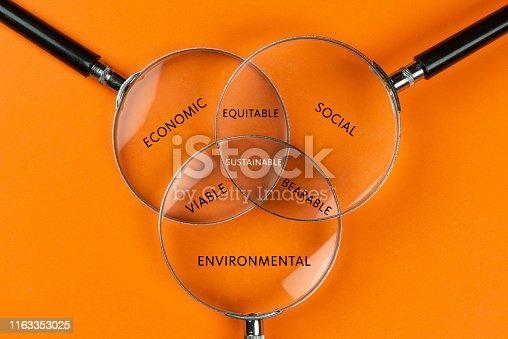 Sustainability diagram. Magnifiers orange background.