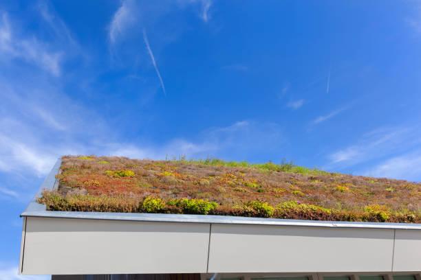 Duurzaam en ecologisch groen dak foto