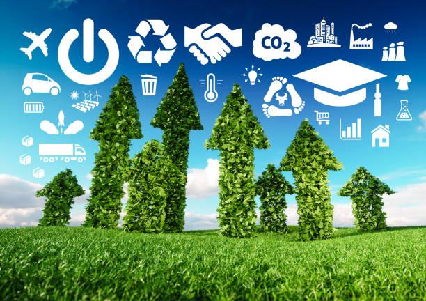 концептуальное изображение устойчивого развития. 3d иллюстрация свежих зеленых листьев стрелки, растущие из травы луг и указывая на эколог� - понятия и темы стоковые фото и изображения