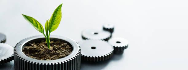 nachhaltige entwicklung - heben stock-fotos und bilder