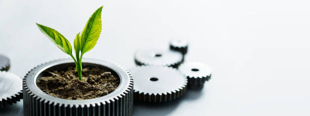 Sustainable Development Metal gears with little plant on white background. sustainable living stock pictures, royalty-free photos & images