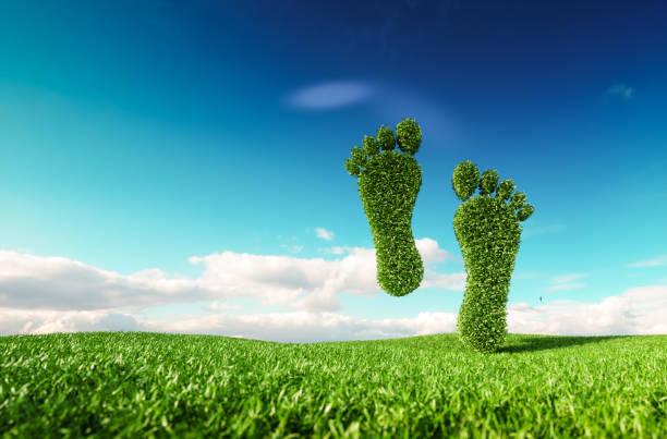 Concepto de vida amigable eco sostenible. Render 3D de un icono de la huella en Prado de primavera fresco con cielo azul de fondo. - foto de stock