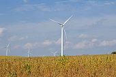 This image shows an autumn landscape of giant sustainable energy wind turbines in an agricultural setting, with sunshine and blue sky and copy space.