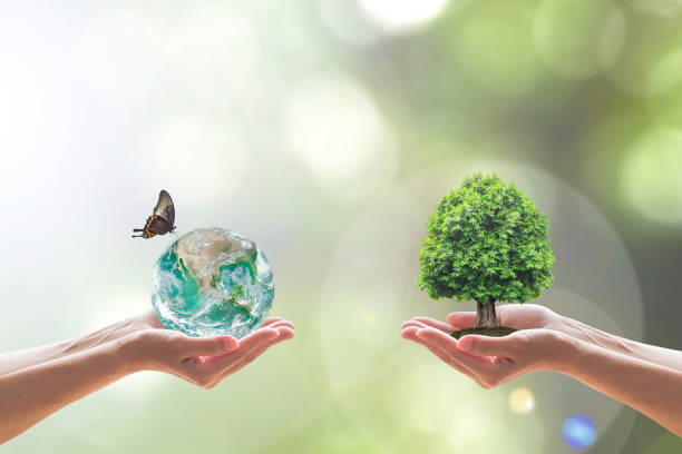 Sustainable environment and saving energy concept with green earth picture id1135565389?b=1&k=6&m=1135565389&s=612x612&w=0&h=fqktfzkmfzu1kpi3knl6tdmqu3miysqtrqkvh z ueo=
