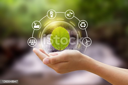 Hand holding a bubble of leaf with eco icon and Nature background metaphor sustainable lifestyle and Eco friendly