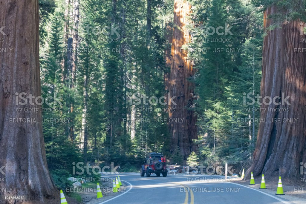 Grant Grove, California, USA - June 15, 2017: suv cars on the highway...