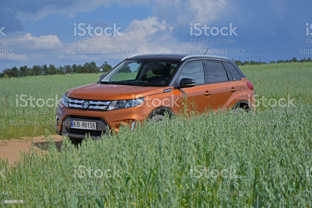 Suzuki Vitara between the fields