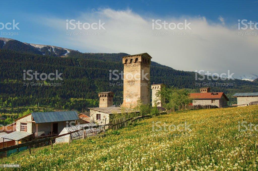 Svanetian towers by dandelion field, spring landscape in Mestia, Svaneti, Georgia stock photo