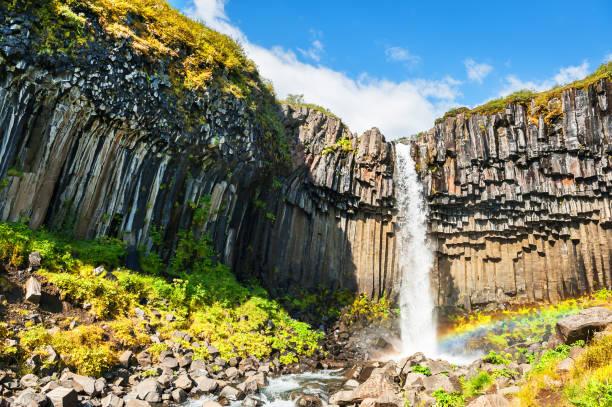 Svartifoss cachoeira na Islândia - foto de acervo
