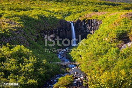 istock Svartifoss waterfall in Vatnajokull National Park, Iceland 1312757869