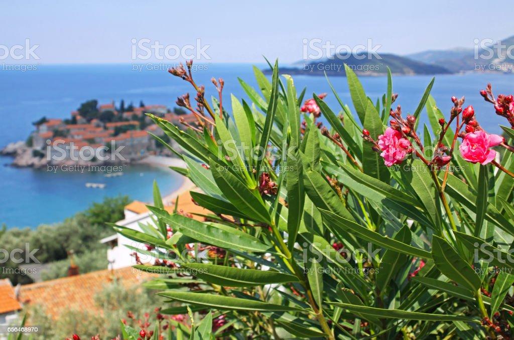 Sveti Stefan island resort, Montenegro stock photo