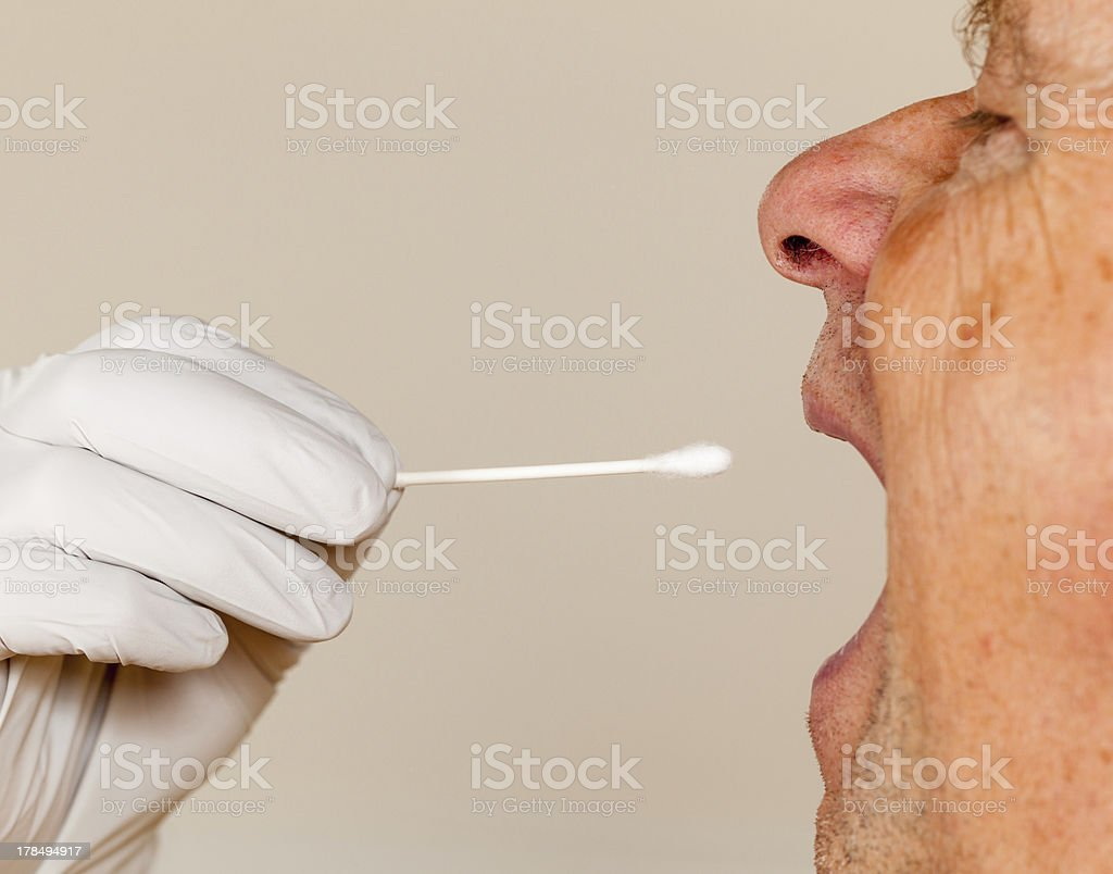 DNA swab of saliva taken from senior man royalty-free stock photo