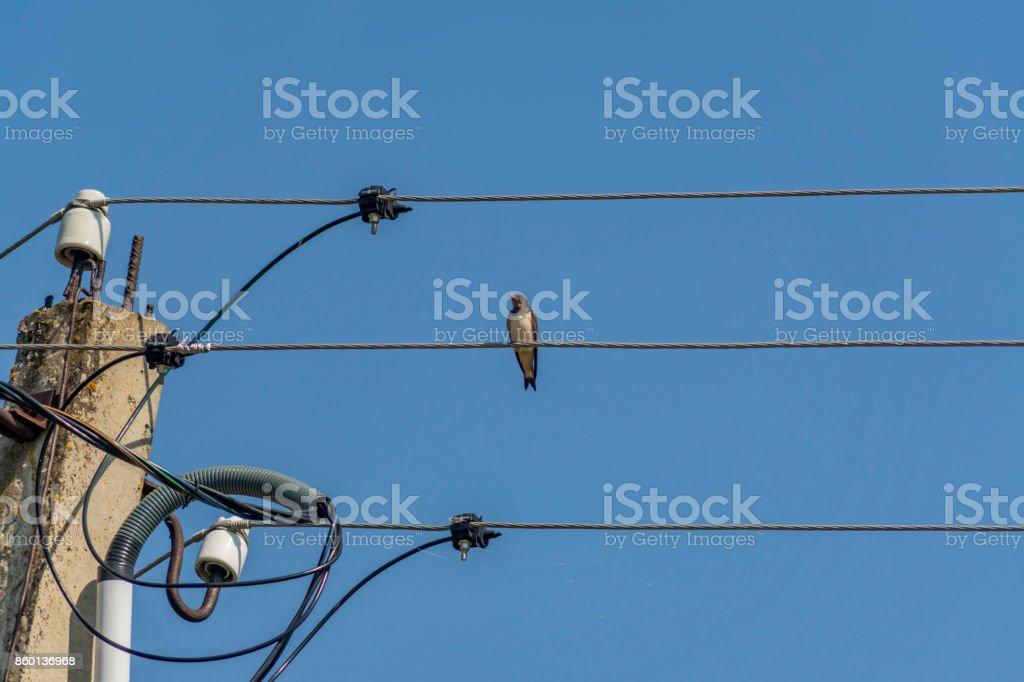 on near wiring