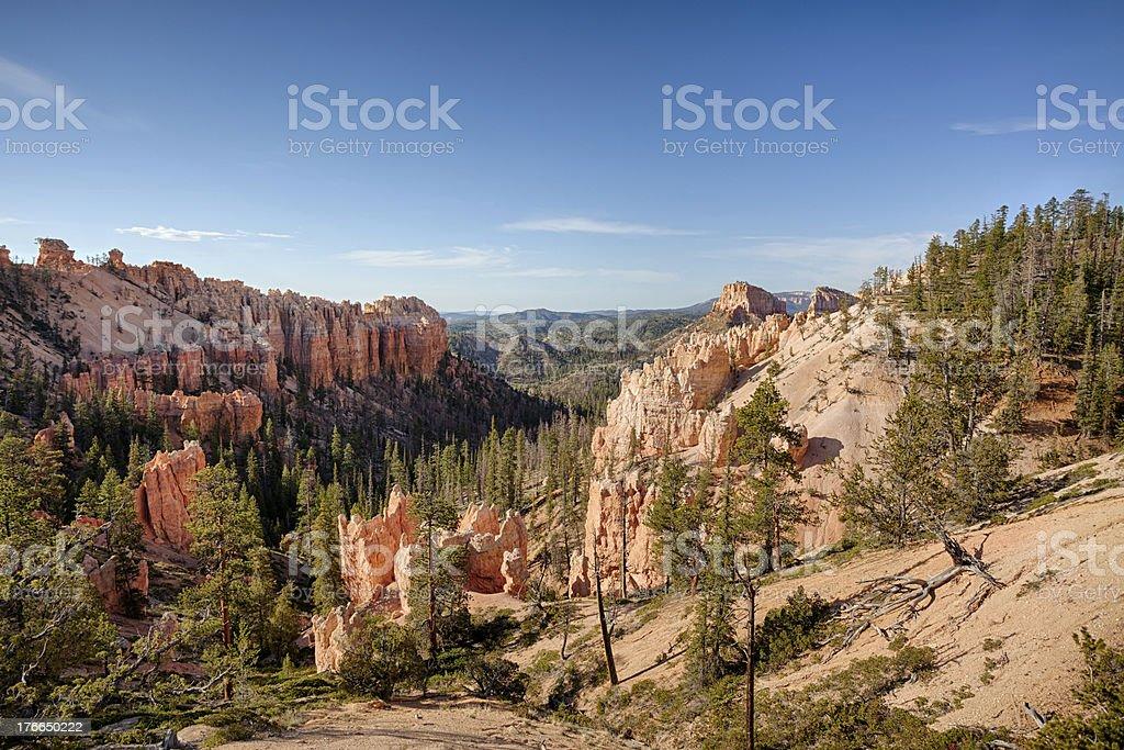 Pantano Canyon foto de stock libre de derechos