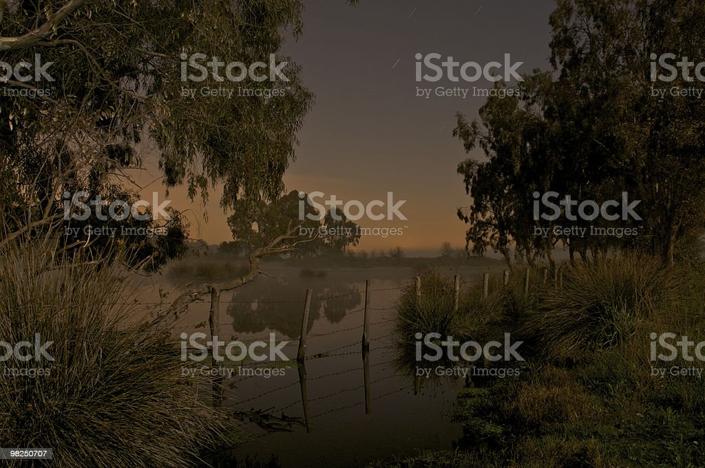 Palude foto stock royalty-free