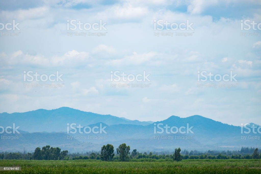 Swamp with grass field with blue sky mountain range background. photo libre de droits