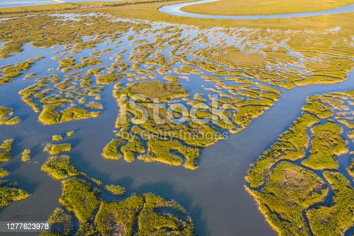 Aerial view of the swamp between Savannah and Tybee Island. These marshes have been identified as one of the most extensive and productive marshland systems in the United States.
