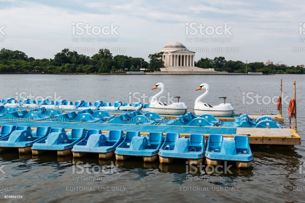 Swan and Paddle Boats at Washington, DC Tidal Basin stock photo