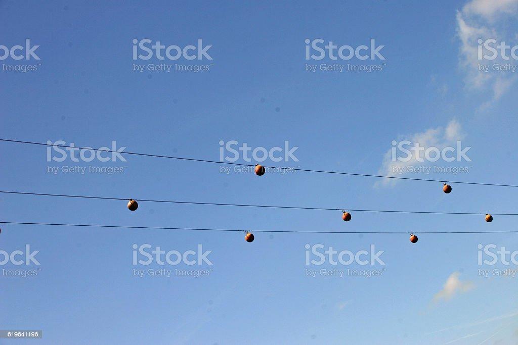 Swan Deflectors Stock Photo - Download Image Now - iStock