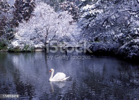 Beautiful winter scene.Winter Wonderland Series: