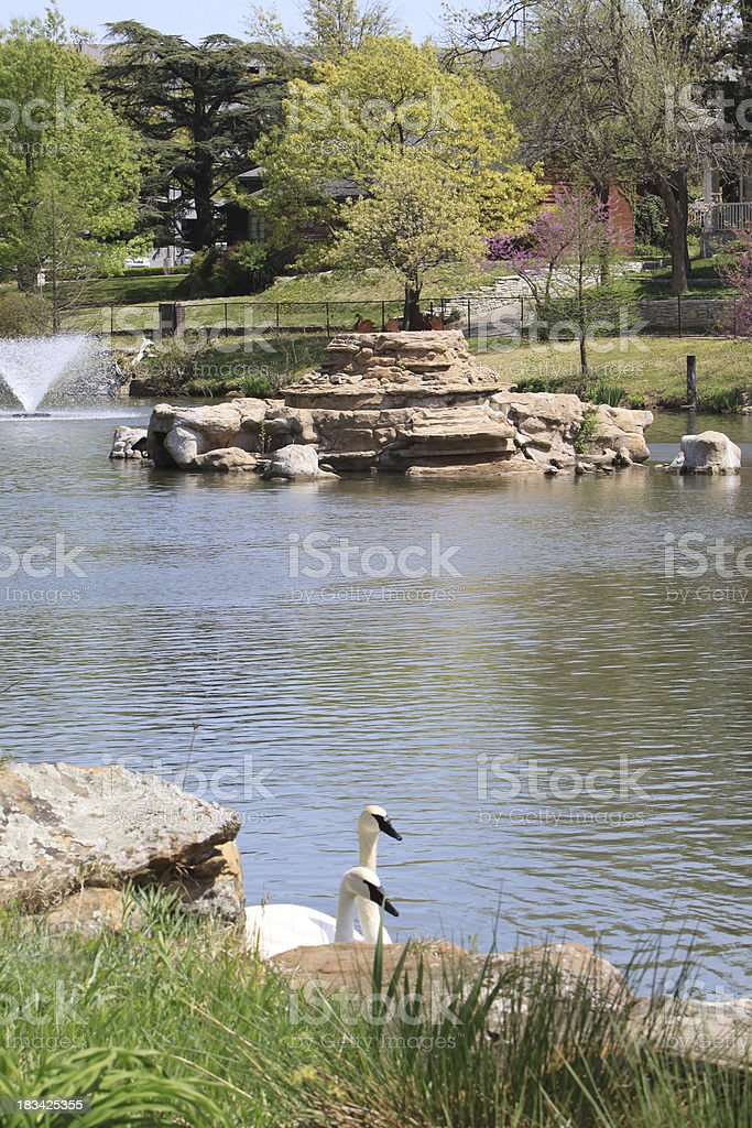 Swan Lake, Tulsa, Oklahoma stock photo