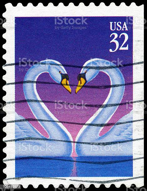Swan Love Heart stamp