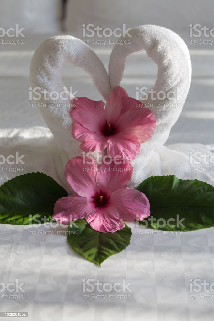 Swan Towel Creation Vertical stock photo