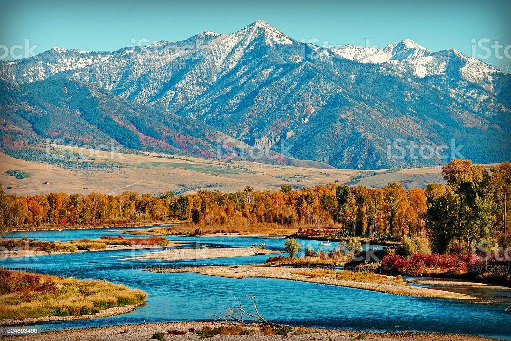Swan Valley stock photo