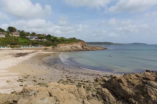 Swanpool beach and coast Falmouth Cornwall England UK