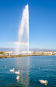 Geneva, Switzerland - September 8, 2020: A rainbow appears on the Jet d'Eau, the 140 meter-high water jet on the Lake Geneva, by a sunny morning with swans floating on the water in the foreground.