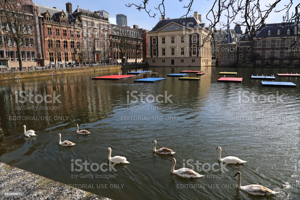 Swans at the Mondrian celebration in The Hague, Holland stock photo
