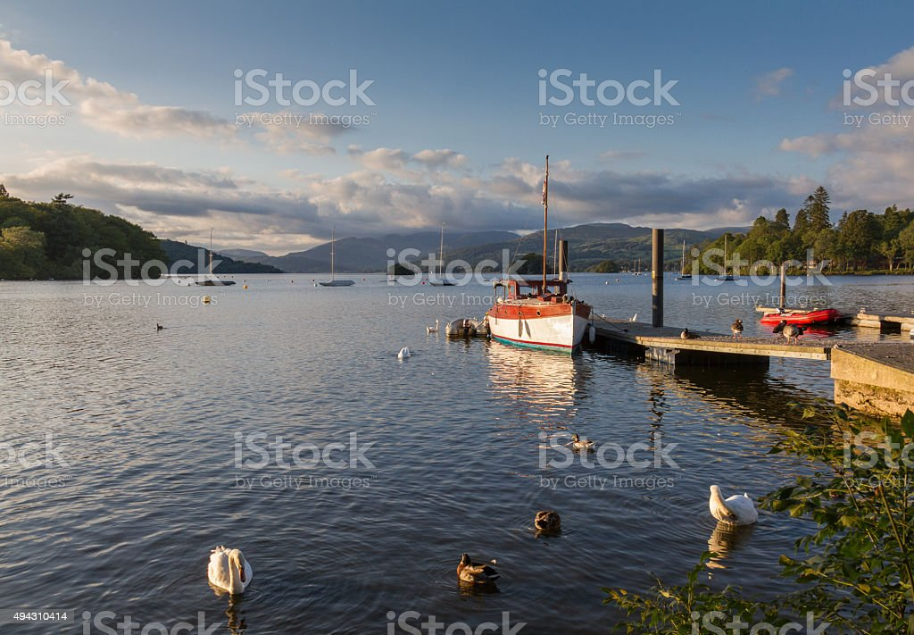 Swans, ducks and fishing boat bathed in afternoon light, Lake-District stock photo