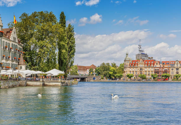 Swans on the Bodensee lake in the German city of Konstanze. Swans on the Bodensee lake in the German city of Konstanze. Germany altocumulus stock pictures, royalty-free photos & images