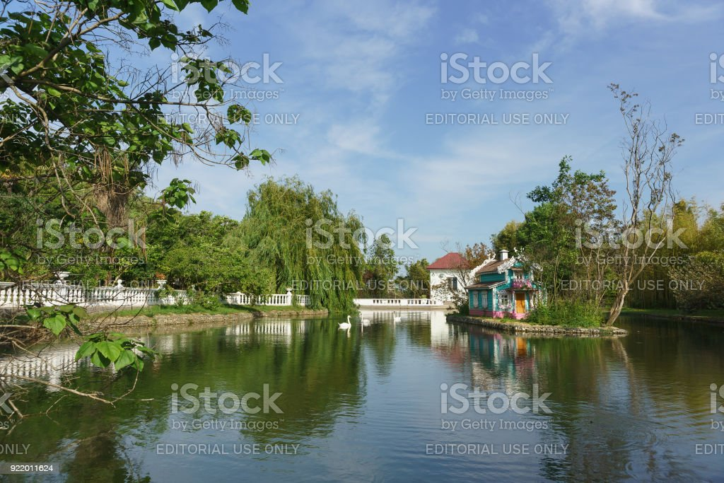 Swan-shipun swims in the beautiful big pond of the city Park of the southern city stock photo