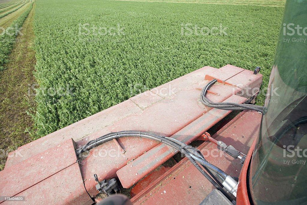 Swather Cutting Alfalfa Crop stock photo