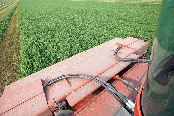 Swather Cutting Alfalfa Crop stock photo