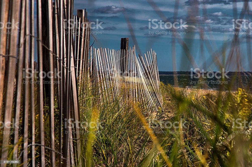 Swaying Sand Fence stock photo