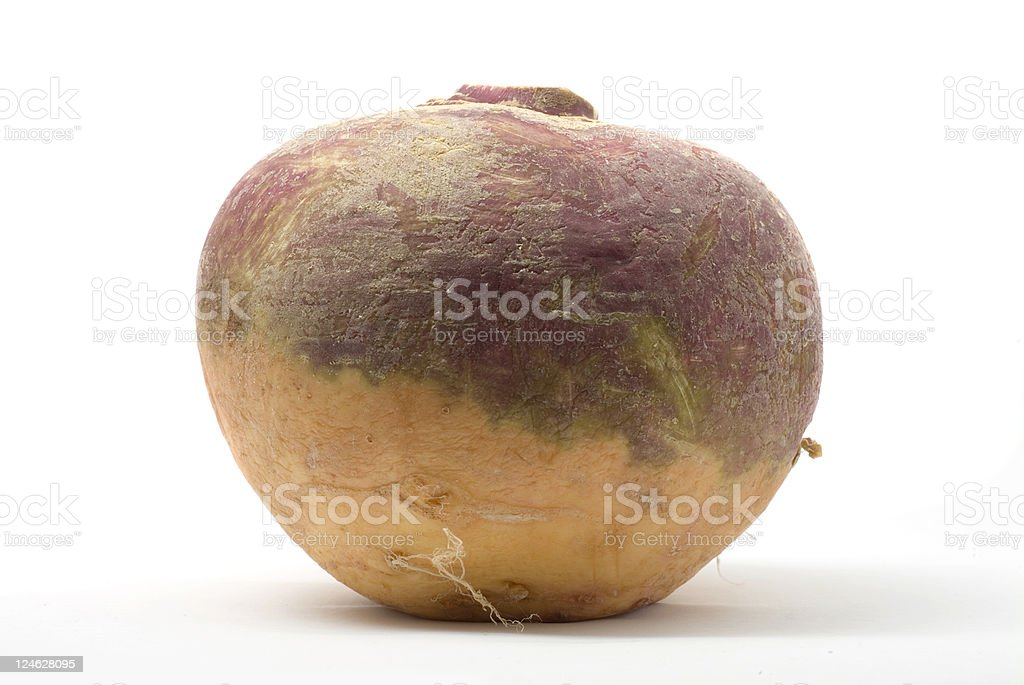 A swede, or rutabaga, isolated on white stock photo