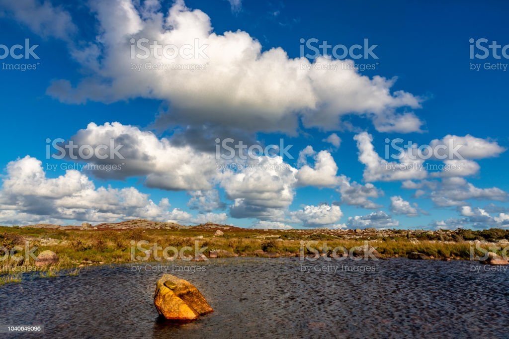 Swedish archipelago under a bright summer sky stock photo