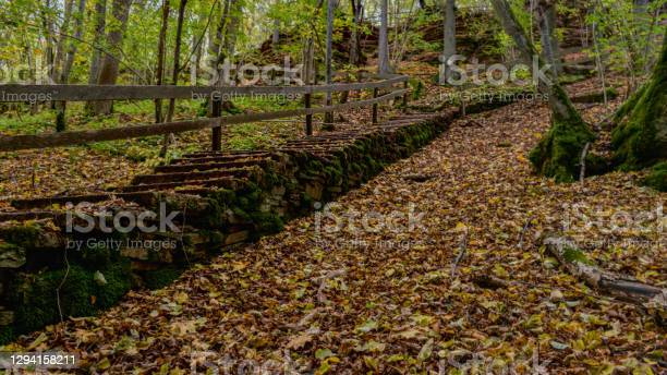 Photo of Swedish autumn leafcovered old staircase