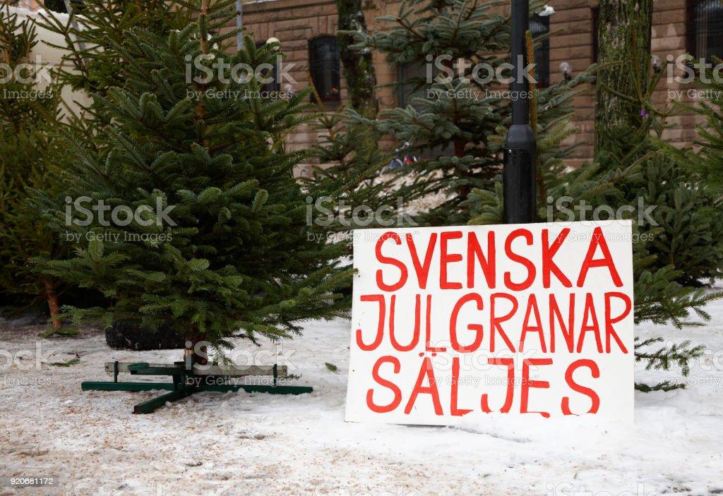 swedish christmas trees for sale royalty free stock photo - Swedish Christmas Tree