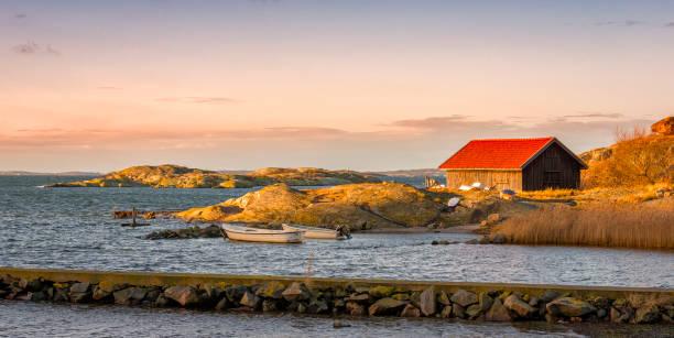 svenska kusten i morgon - bohuslän nature bildbanksfoton och bilder